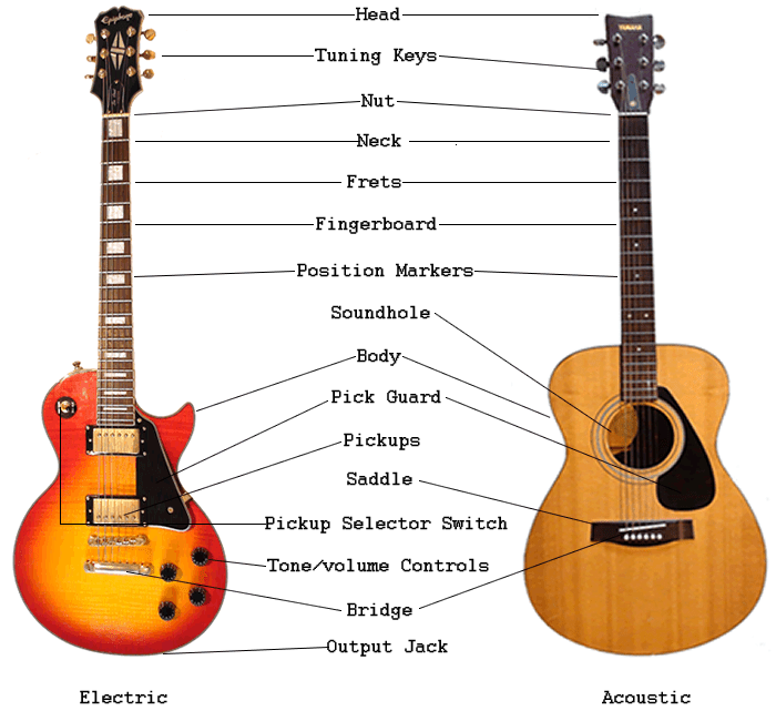 an overview of guitar parts electric acoustic guitar anatomy. Black Bedroom Furniture Sets. Home Design Ideas