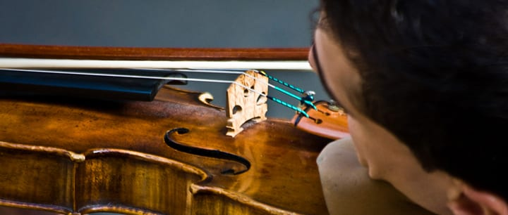 Teach Yourself Violin in 8 Easy Steps