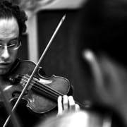 Violin Guy