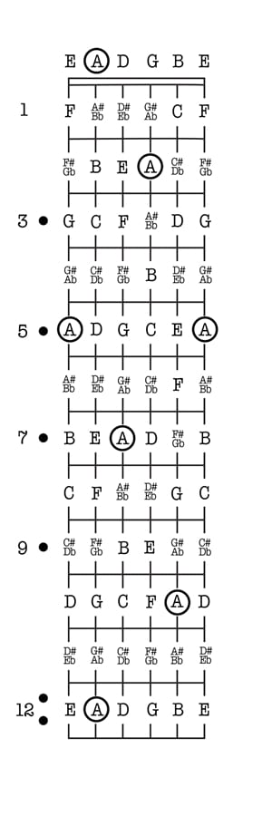 Notes On A Guitar Neck Chart