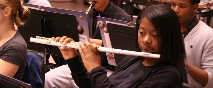 Learn to Play the Flute: Your Top Challenges, Resolved!