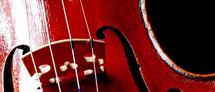 How to Set Up a Violin Bridge | Violin Tips
