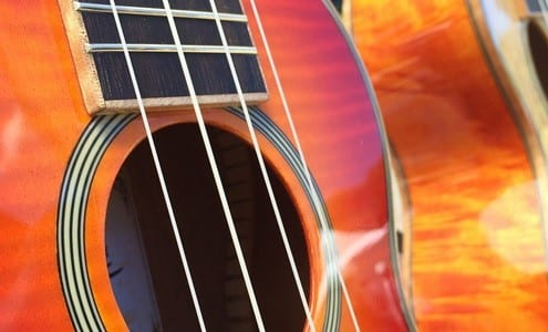 Best Uke for Your Buck Our Favorite Ukulele Brands for Beginners