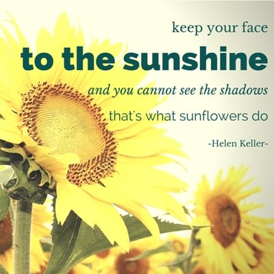 keep your face to the sunshine, and you can't see the shadows. that's what sunflowers do.
