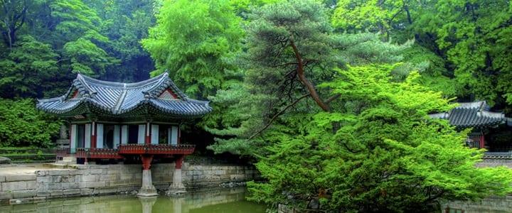 Seoul- Study Abroad 2015