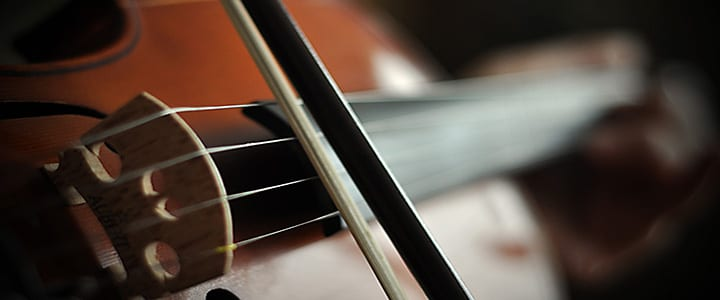 5 Violin Techniques You Didn't Know Existed – TakeLessons Blog