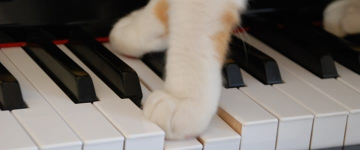 4 Ways to Make Practicing Piano Scales FUN! [Infographic]