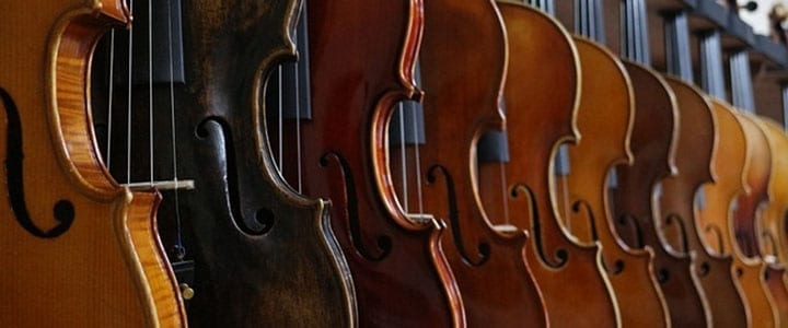 What Are the Different Parts of a Violin? [Infographic]