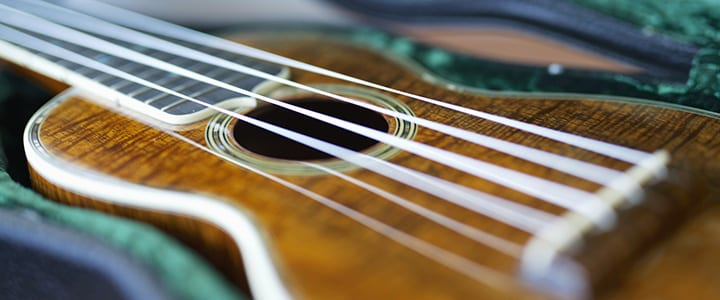 3 Tips and Tricks to Learning Ukulele Chords