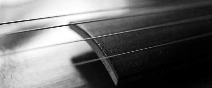 The Ultimate Guide to Choosing the Best Violin Strings