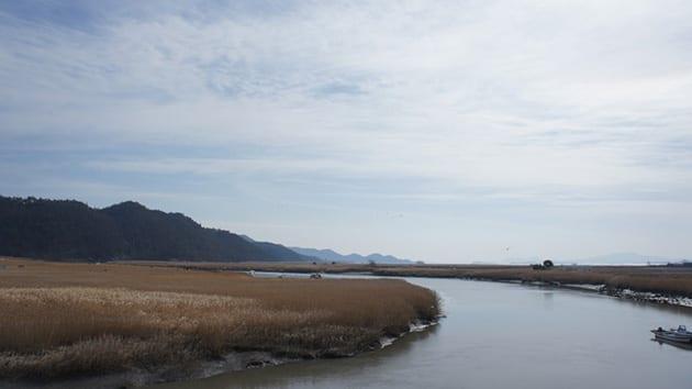 Visit Korea - Suncheon Bay