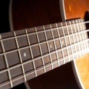 4 Reasons Why Ukulele Is the Perfect Stringed Instrument for Beginners