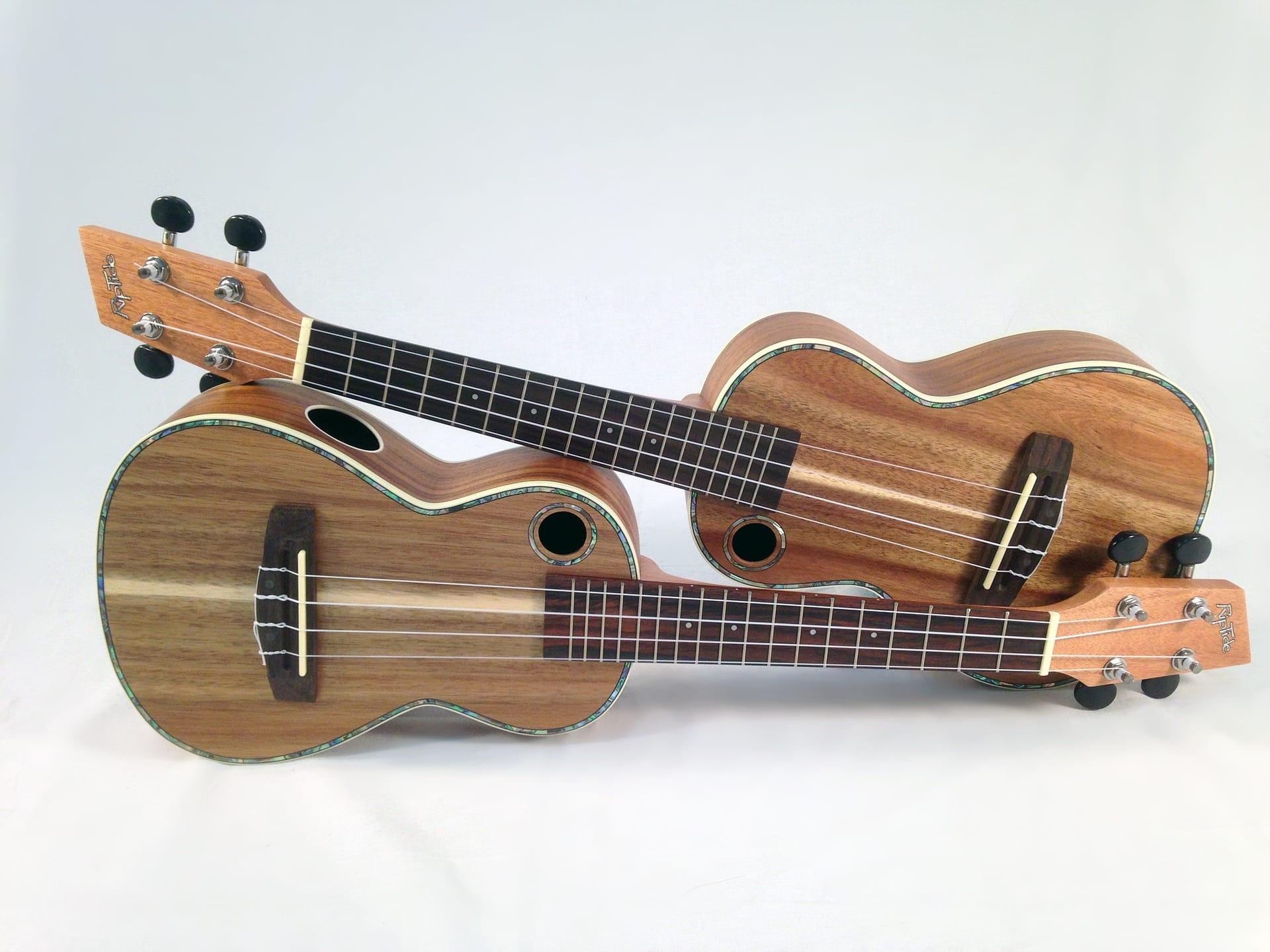 Learn How To Play The Ukulele | Learn Ukulele | Uke Like ...