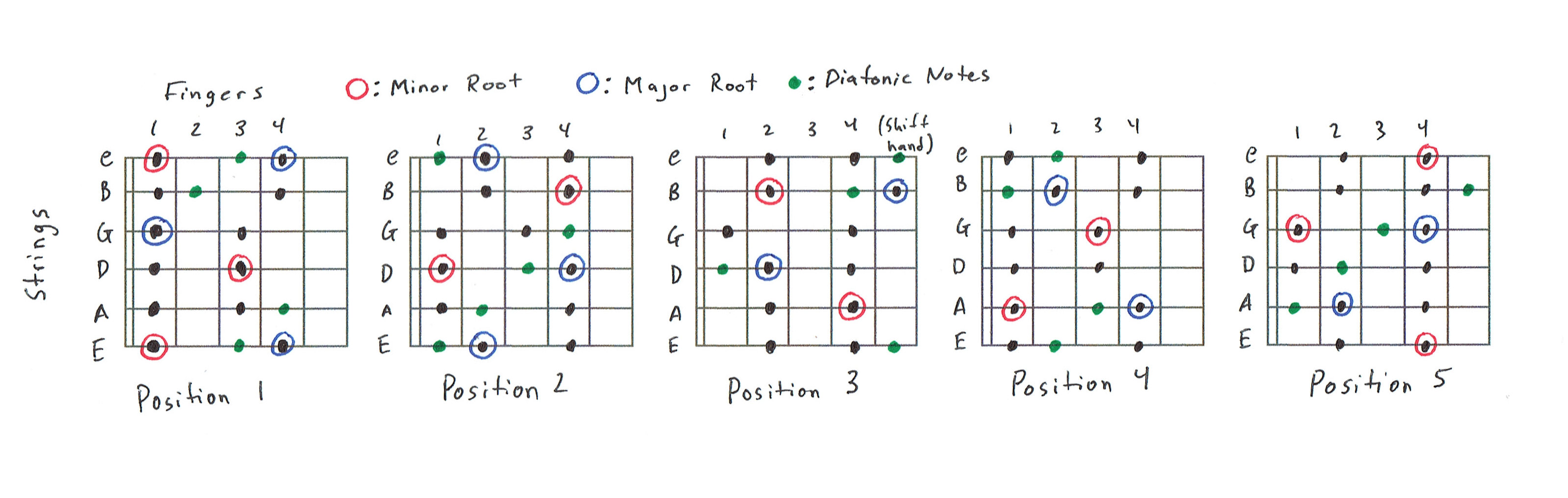 5 Position Diatonic Scale Charts