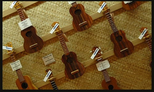Types of Ukuleles: The Ultimate Beginner's Guide