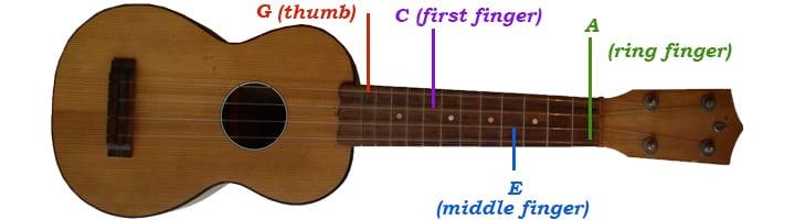 Mandolin four finger mandolin chords : Ukulele Fingerpicking for Beginners