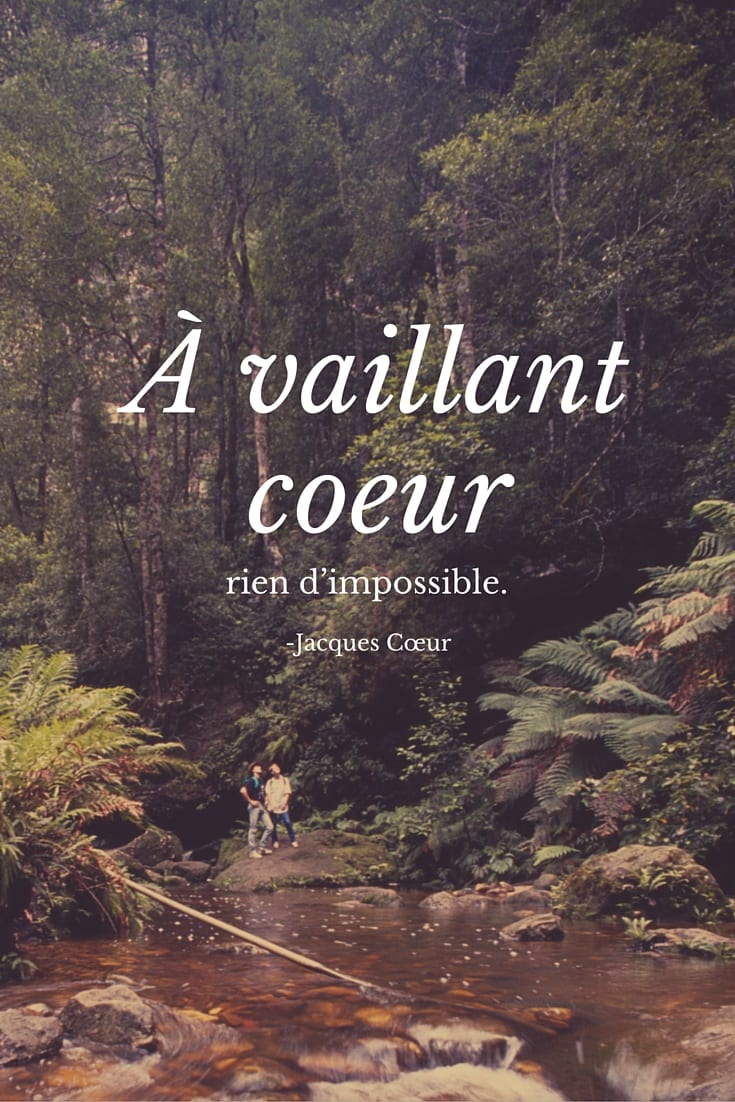 50 French Quotes to Inspire and Delight You - photo#29