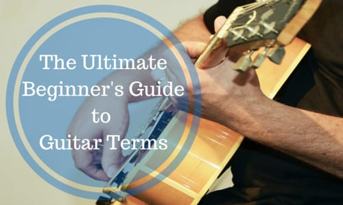 The Ultimate Beginner's Guide to Guitar Terms [Infographic]