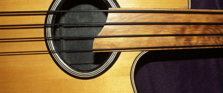 Advantages & Disadvantages of a Fretless Guitar