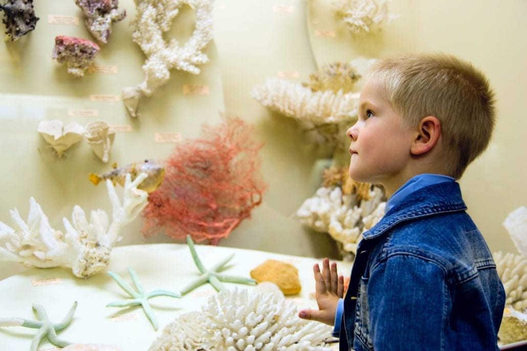 Add a museum visit to your daily homeschool schedule