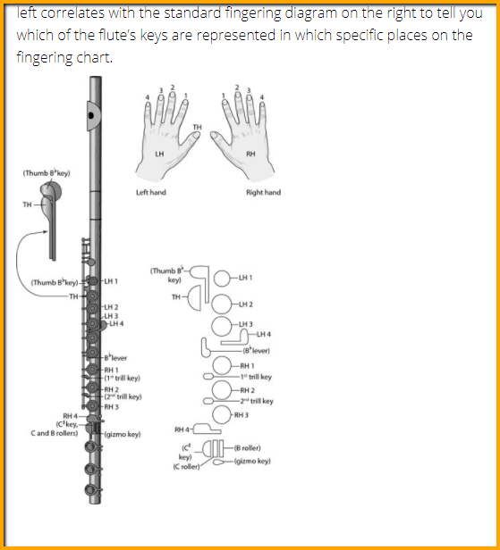 graphic about Printable Flute Finger Chart called The Immediate Foolproof Route in the direction of Understand Flute Notes [Newcomers
