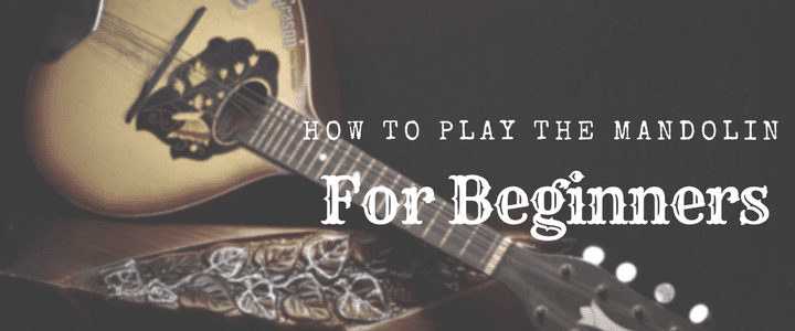 how to play mandolin for beginners