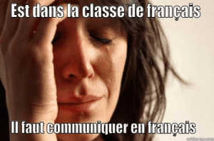 French language meme first example